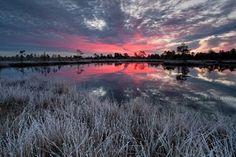 First cold by Andrei Reinol