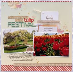 Tulip Festival - Out of the Pocket #3