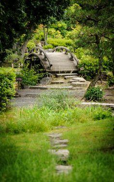 Photos Jungle Nature Bridges Bambusoideae Forests Tropics x