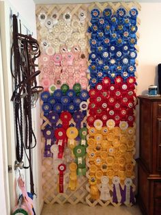Wall covered with lattice (or a welded wire fence panel) = instant ribbon wall. maybe a good idea in the tack room Horse Ribbon Display, Show Ribbon Display, Horse Show Ribbons, Trophy Display, Award Display, Ribbon Quilt, Ribbon Wall, Band Wand, Ribbon Crafts