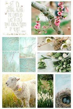 Spring Again #Moodboards #Mosaic #Collage