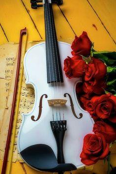Violin Art, Violin Sheet Music, Violin Instrument, Violin Photography, Fine Art Photography, Music Pics, Music Love, Music Wallpaper, Nature Wallpaper