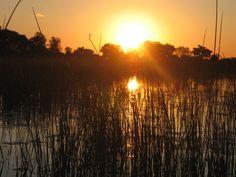 Sunset on the Okavango Delta
