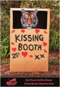 Wild Thing Kissing Booth