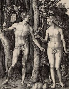Albrecht Dürer | Adam und Eva - Adam and Eve | 1504 | Albertina, Wien