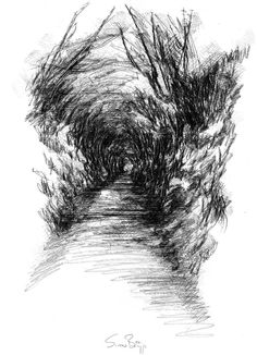 Country lane, Artist Sean Briggs producing a sketch a day, prints available at https://www.etsy.com/uk/shop/SketchyLife  ##artist ##Etsyshophttp://etsy.me/1rARc0J #lane ##illustration#ink#print#draw©#Sean_Briggs #art #dorset #drawing #sketch