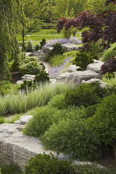 Slope landscaping design. This is the perfect way to handle some of the rocky areas on the property.