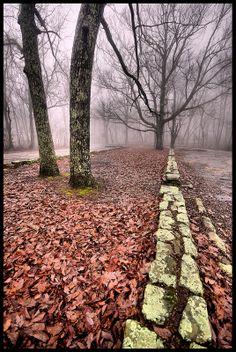 Misty Mountain, Monte Sano State Park, Alabama