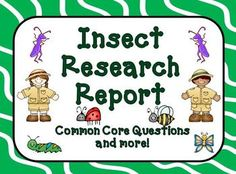 Common Core Research - We have developed this report template and additional worksheets, organizers, tools and forms to use for your students to create, develop, write, edit, illustrate, present, and assess your students' insect research report. $