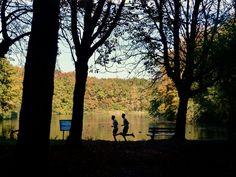 recreatie in het Haagse Bos in de herfst