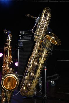 Saxophones [Single Reed Instruments with a Conical Bore] 15 - Bass Sax (of Frédéric Gastard) by KM's Live Music shots, via Flickr