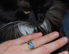 Putting A Ring On It | The Sisterhood of the Jaunty Quills -Jesse Hayworth