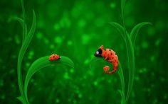 Ladybug Chameleon HD Wallpapers 300x187 Ladybug Chameleon HD Wallpapers