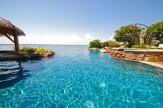 Allison Pools - Natural Swimming Pool   by Allison Pools