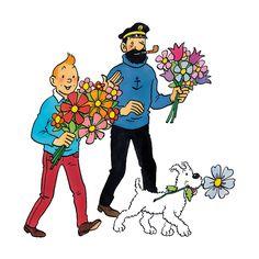 Tintin Haddock Snowy