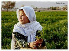 Awesome beauty harvest field's & cute Balochi girl