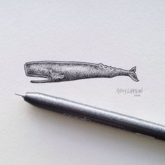 The finished little stipple whale from the periscope video I did last week. #whale #illustration #art