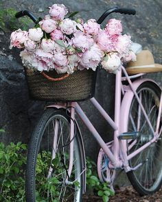 So beautiful! Peonies remind me of my childhood. So beautiful! Peonies remind me of my childhood. Deco Champetre, Bike Photography, Bicycle Art, Bicycle Shop, Bicycle Design, Old Bikes, Vintage Bicycles, Prom Pictures, My Favorite Color
