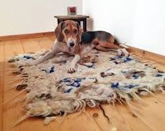 Eco-friendly and elegant felted scarves & jewelries! Kitchen Rug, Nuno Felting, Sheep Wool, Shag Rug, Animal Print Rug, Home Accessories, Textiles, Rugs, Affogato