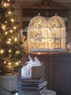 Idea for lighting a bird cage. I have a beautiful empty cage!