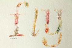 Beach Art, Feather Art, Fly Watercolor