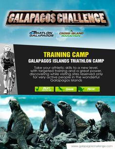 Galápagos Challenge