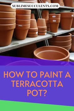 Here is how to paint a terracotta pot. Terracotta pots are one of the most popular types of containers for succulents. They're famously inexpensive and their classic earthy red coloring works well with nearly any color palette. Planting your succulents in vibrant containers is a fun way to add a splash of color to your garden, so why not spice up your boring terracotta pots with a coat of paint? Check this pin! #terracotapot #terracotta #pots Ceramic Pots, Terracotta Pots, Glazed Ceramic, Succulents In Containers, Cacti And Succulents, Painted Clay Pots, Paint Primer, Succulent Care, Types Of Painting