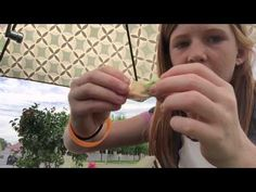 A 10 year old girl shows how to make a Hollyhock doll Projects For Kids, Crafts For Kids, Daisy Crown, Van Gogh Landscapes, 10 Year Old Girl, Fairy Crafts, Hollyhock, Girls Show, Live Long