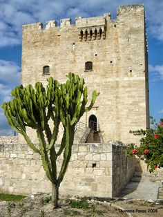 Kolossi Castle: a former Crusader stronghold 14 km west of the city of Limassol on the island of Cyprus. #kitsakis