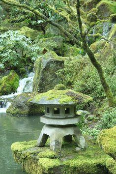 Japanese Garden: moss covered rocks