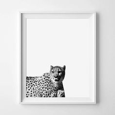 Cheetah Print Cheetah Photography Black And by pinkbubblegumshop