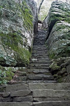The stone stairway cut into the natural rock leading down into Bell Smith Springs. Shawnee National Forest, Illinois