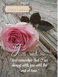 Good afternoon Ladies, wishing you a most blessed day in the Love and Peace of Jesus! Love you Gracious Sister's , have a lovely day! (via SweetT) Biblical Quotes, Prayer Quotes, Religious Quotes, Bible Verses Quotes, Bible Scriptures, Faith Quotes, Spiritual Quotes, Scripture Art, Favorite Bible Verses