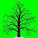 Gif anime arbre automne