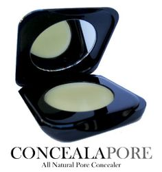 Cover Large Pores Flawlessly Concealapore Pore Filler Fills Conceals Large Pores Instantly