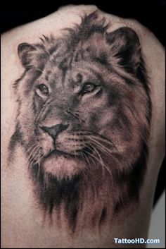 to come.... my own lion tat  :)