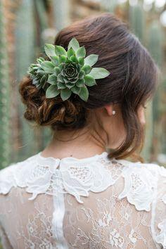 Brautfrisur, Hochsteckfrisur, Hochzeit, Sukkulente