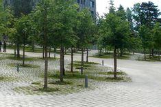 Affordable Landscaping Near Me Landscape And Urbanism, Landscape Concept, Contemporary Landscape, Urban Landscape, Landscape Design, Garden Design, Landscaping Near Me, Mulch Landscaping, Parks