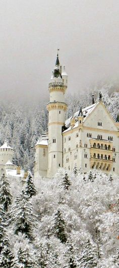 Snowy, Neuschwanstein Castle, Germany. Called the Fairytale Castle as it was the model for the castle in Sleeping Beauty. photo via emelia