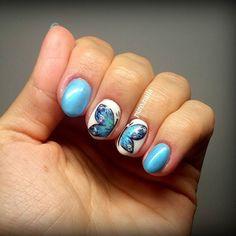 Blueeee bluuueee na na na... PROnail 576,555  #hybrydypronail #paznokcie #paznokciehybrydowe #hybrydnails #hybryda #hybrydy #hybridnails #loveblue #butterfly #butterflynails #beautynails #woman #summer #whiteandblue #bluenails #woman #kobieta #piekne #piękne #polishgirl  #finishgirl #motyl #pazurki #motylenapaznokciach #hobby
