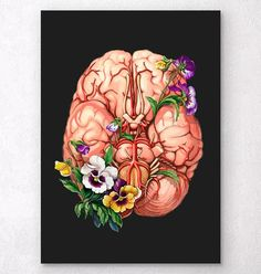 Beautiful antique looking funky art print showing anatomy of human liver. Perfect gift for doctors, medical students. Brain Painting, Brain Drawing, Brain Art, Guy Drawing, Drawing Reference, Anatomy Reference, Heart Anatomy, Brain Anatomy, Human Anatomy Art