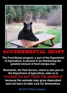 Okay, I think food stamps definitely have their place, but this is a good point. :)