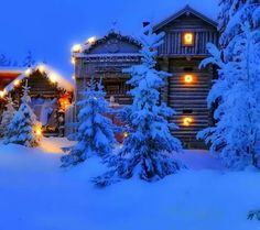 1 visitor has checked in at Mountain Pictures. Christmas Lights, Christmas Time, Christmas Cards, Christmas Feeling, Canada Christmas, Snow Cabin, Red Bench, Snow Night, Mountain Pictures