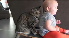 Faye est un bébé qui aime l'aventure et se promener en planche à roulettes avec son chat. Adorable!
