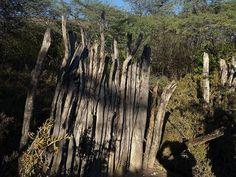 > Cae la noche y los #Jaraguenses paseando por el #LagoEnriquillo y el desastre ocurrido