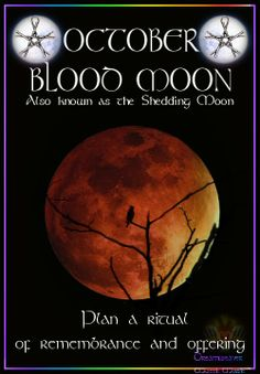 Moon:  OCTOBER ~ BLOOD #MOON: Also known as the Shedding Moon. Plan a ritual of remembrance and offering. Magic Spells, Moon Spells, Moon Magic, Sabbats, Blood Moon, Beautiful Moon, Moon Child, Moon Phases, Samhain