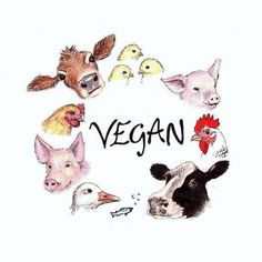 vegan art by Bonnie Leeman Vegetarian Quotes, Vegan Quotes, Vegan Tattoo, Vegan Memes, Vegan Humor, Vegan Blogs, Vegan Recipes, Vegan Art, Vegan Food