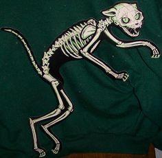 "Vintage Beistle Skeleton Cat  ""Vintage Halloween"" by riptheskull, via Flickr.  CREEPY"