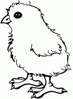 Mother hen rooster and cute chicks coloring page SuperColoring