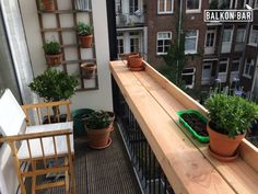 Balkon.bar. Plants.